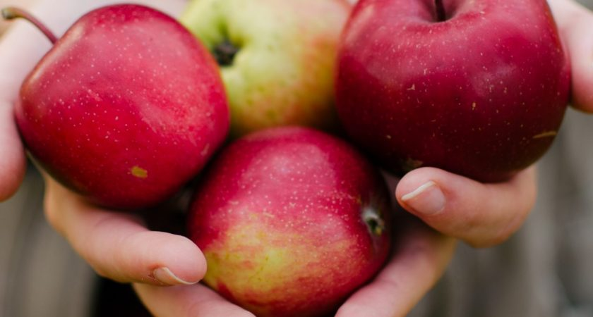 Healthy & Fruitful Leadership – Part Four